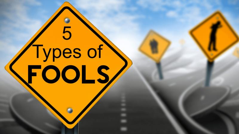 5 Type Fools