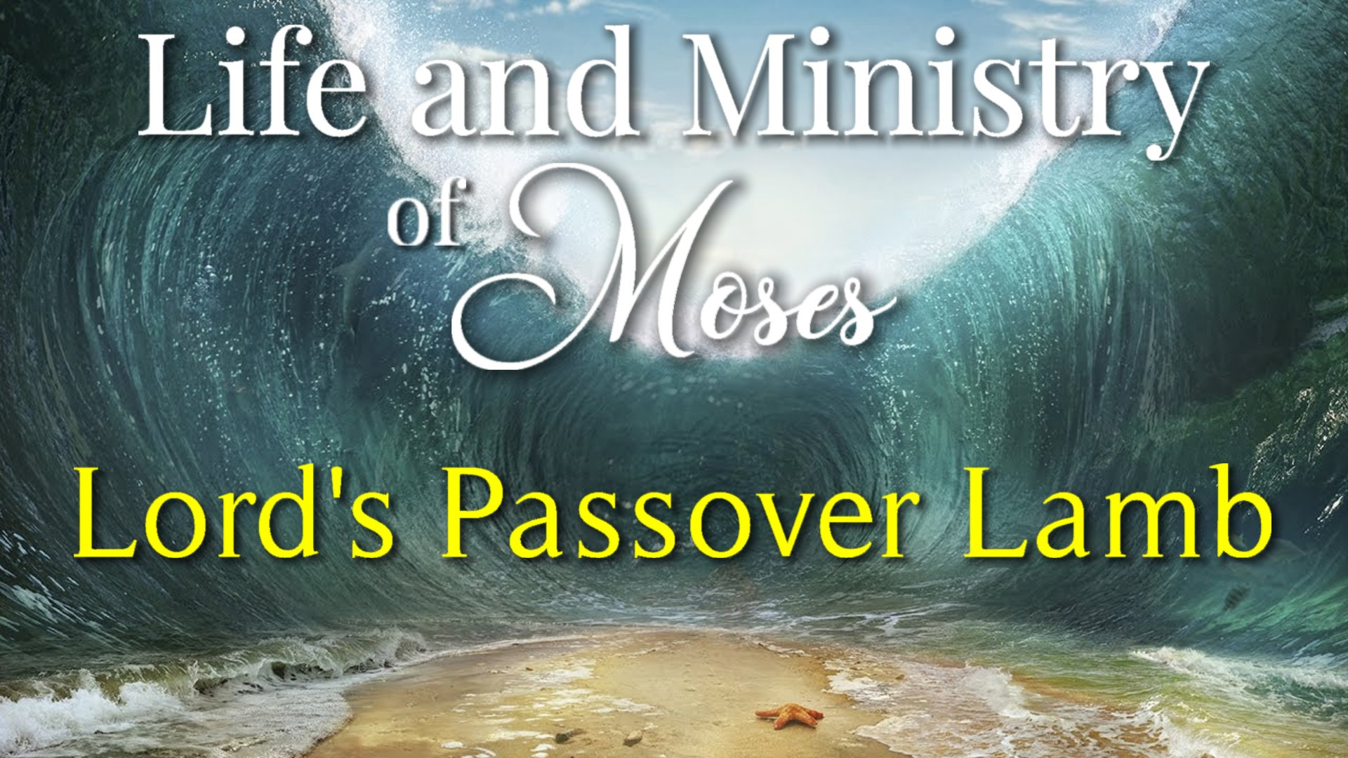 12 Lord's Passover Lamb
