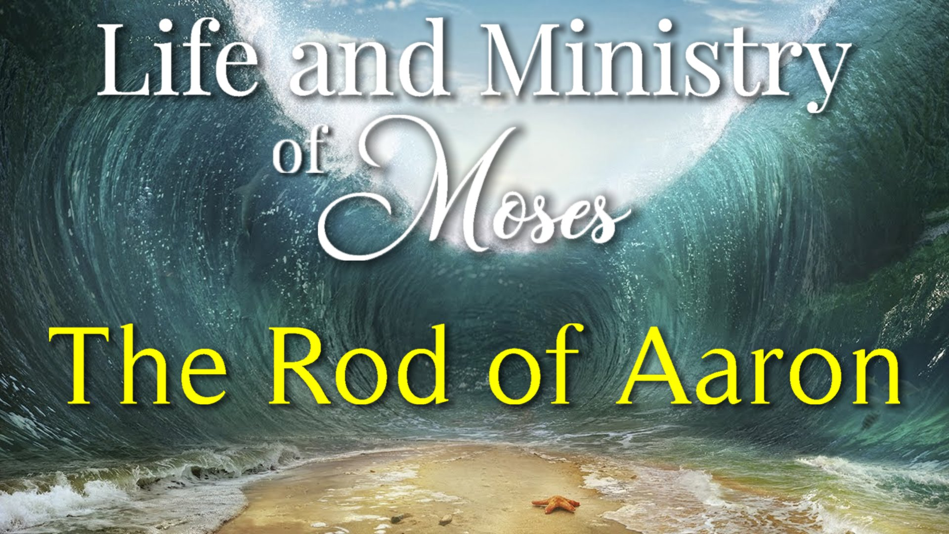 38 The Rod of Aaron