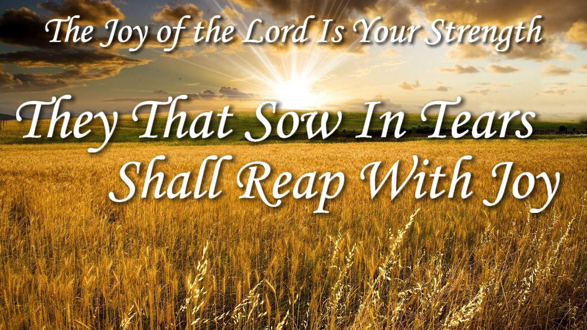 They That Sow in Tears Shall Reap with Joy